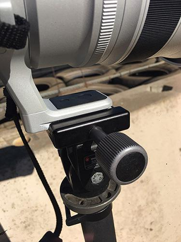 Fujinon XF200 mounted via its Arca-Swiss compatible lens foot to a Really Right Stuff monopod clamp